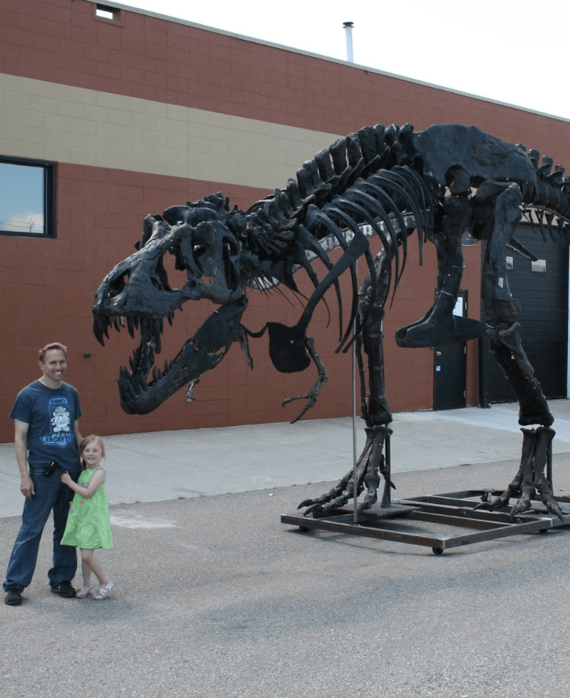 Tyrannosaurus rex - skeleton  Terry and his daughter standing beside the T.rex known as King Kong. This T.rex was a full grown adult and suffered many injuries, but one in particular might have been his downfall. King Kong suffered a badly broken fibula.