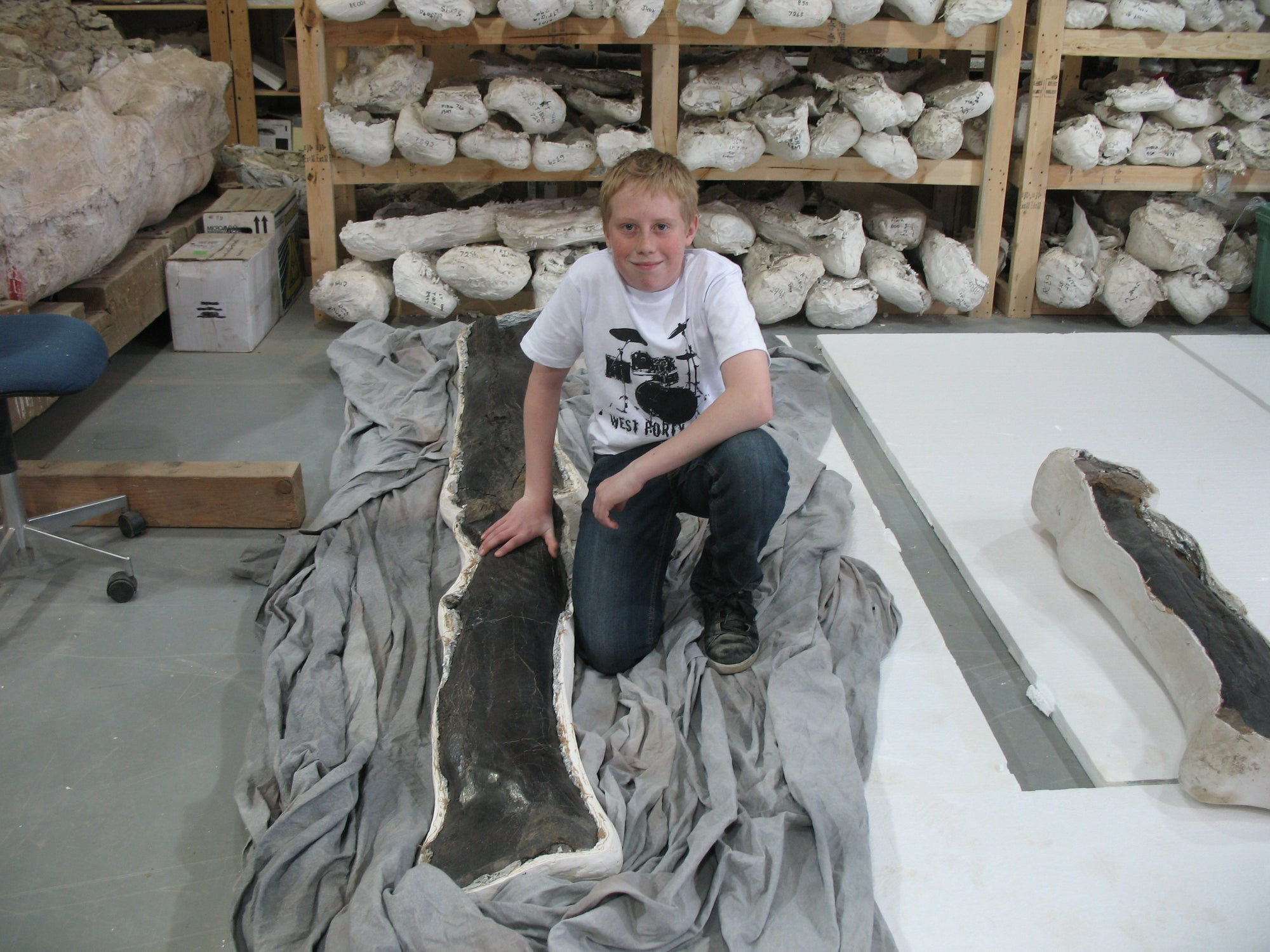 "Tyrannosaurus rex - femur, tibia  One of our guests posing with the leg of a T.rex we named ""King Kong"". The leg bones are still in their protective field jackets.    (approx. 65 million years old)"