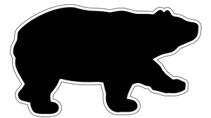 Black Bear Lights