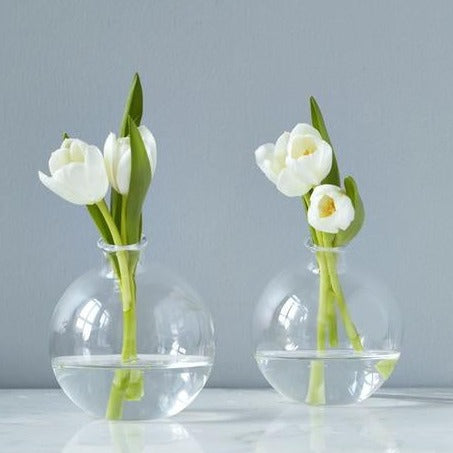 Clear Sphere Vase | 5""