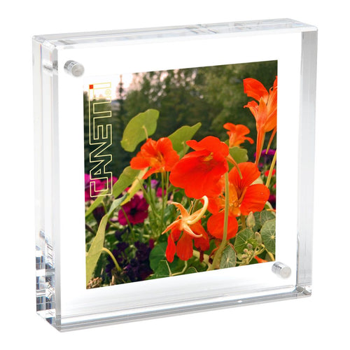 Canetti Design Group | Magnetic Frame | 6x6