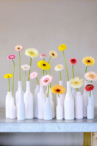 multi colored gerbera daisies in white bottle-shaped vases, sitting on a table