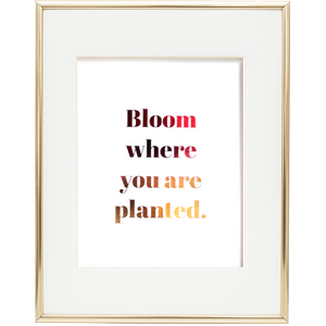 Bloom where you are planted text in pink and gold ombre on white background in gold frame