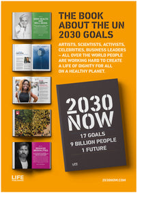 2030 NOW - ENGLISH VERSION