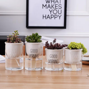 4 different sized self watering planters with a plant and the words 'good morning' printed on the glass in white