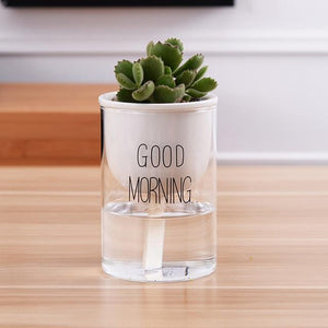 self watering planter with a plant and the words 'good morning' printed on the glass in black