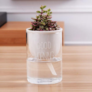 self watering planter with a plant and the words 'good morning' printed on the glass in white