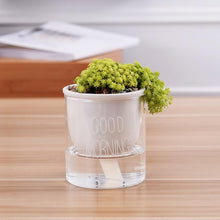 Load image into Gallery viewer, self watering planter with a plant and the words 'good morning' printed on the glass in white