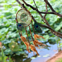 Load image into Gallery viewer, multicolored dreamcatcher hanging on a tree