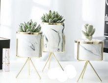 Load image into Gallery viewer, 1 set of 3 marble glazed planter pots with gold iron stands in different sizes
