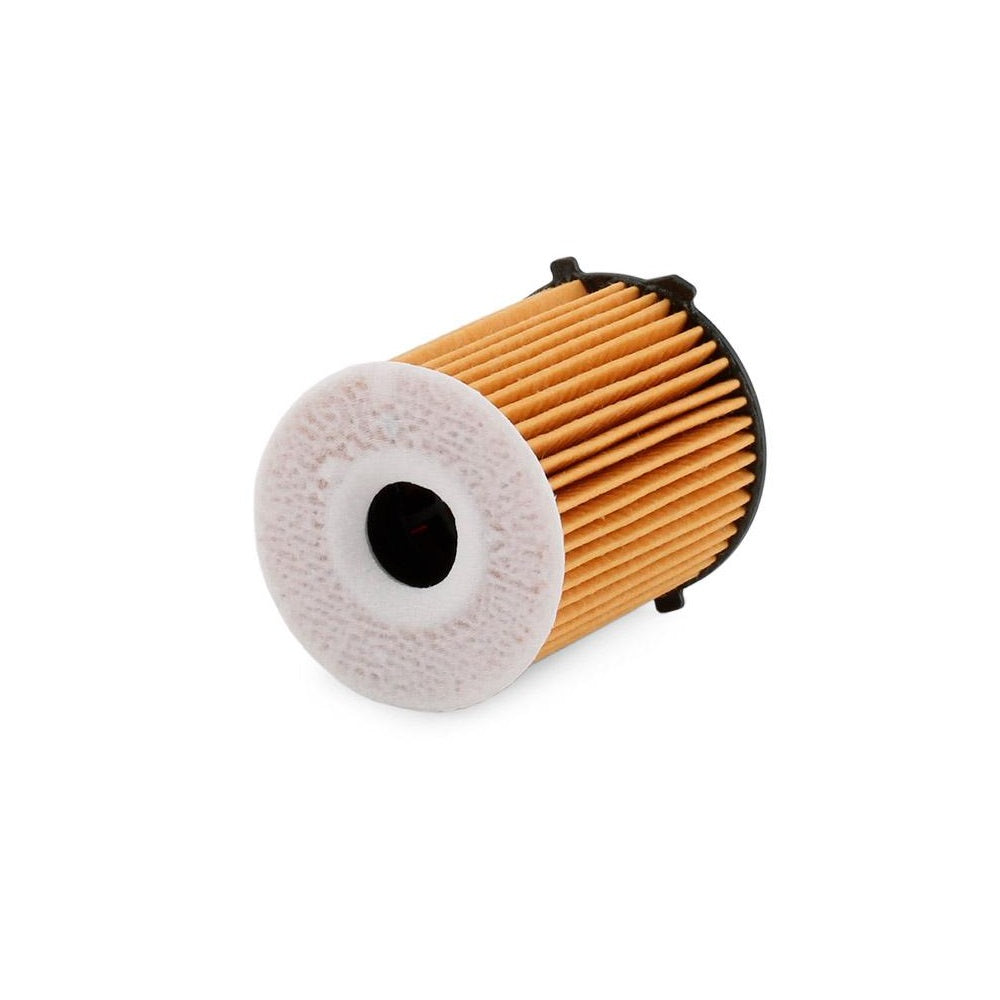 Fiat Oil Filter Element, Replacement
