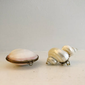 Pair of Shell Trinket Boxes