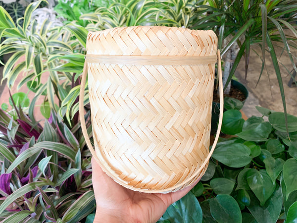 Bamboo Bubble Basket