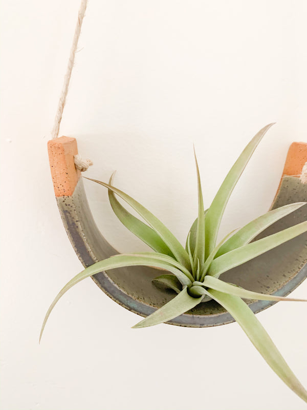Gunmetal Green Air Plant Cradle