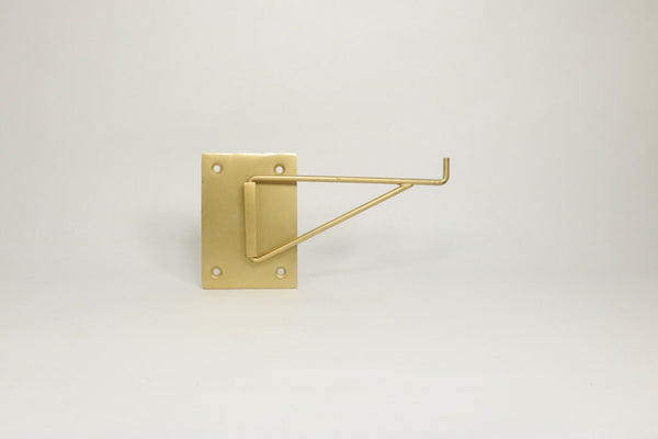 Brass Pivoting Wall Hook