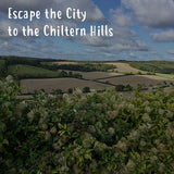 Follow the red fox to the Chiltern Hills