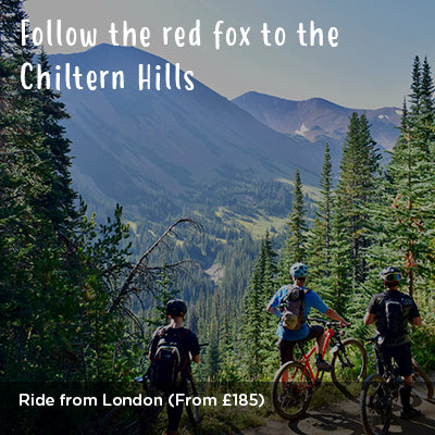 Follow the red fox to the Chiltern Hills - Escape the city ride