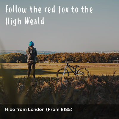 Follow the red fox to the High Weald - Escape the city ride