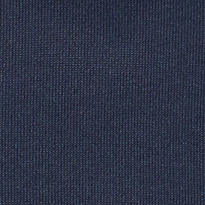 Swatch: Navy Blazer (selected)