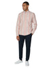 Long-Sleeve Archive Oxford Stripe Shirt - Light Pink