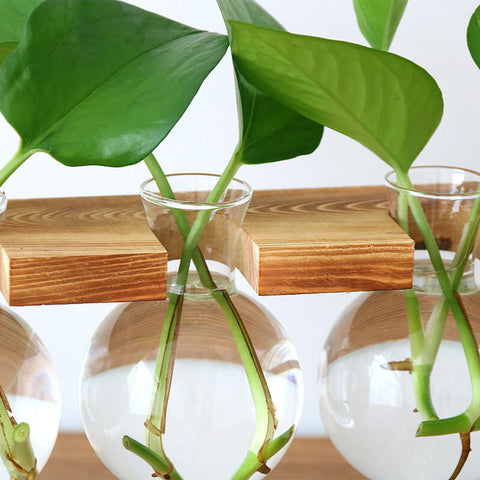 Wooden-Stand-Hydroponic-Planter-Decor-Type-C