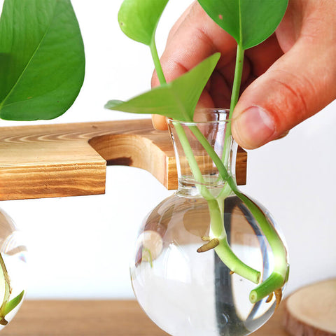 Wooden-Stand-Hydroponic-Planter-Decor-Close-Look