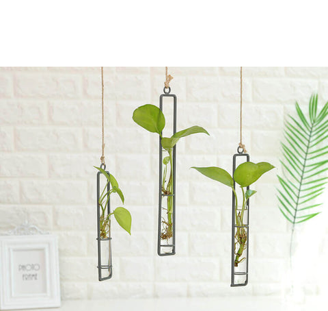 Hanging-Iron-Hydroponics-Planter-Decor-Image