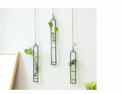 Hanging-Iron-Hydroponics-Planter-Decor-Image-2