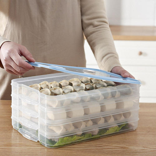 Refrigerator Dumplings Storage Box With Lid Plastic Freezer Fridges Space Saver Food Organizer Rack Holder Tray Boxes FDH