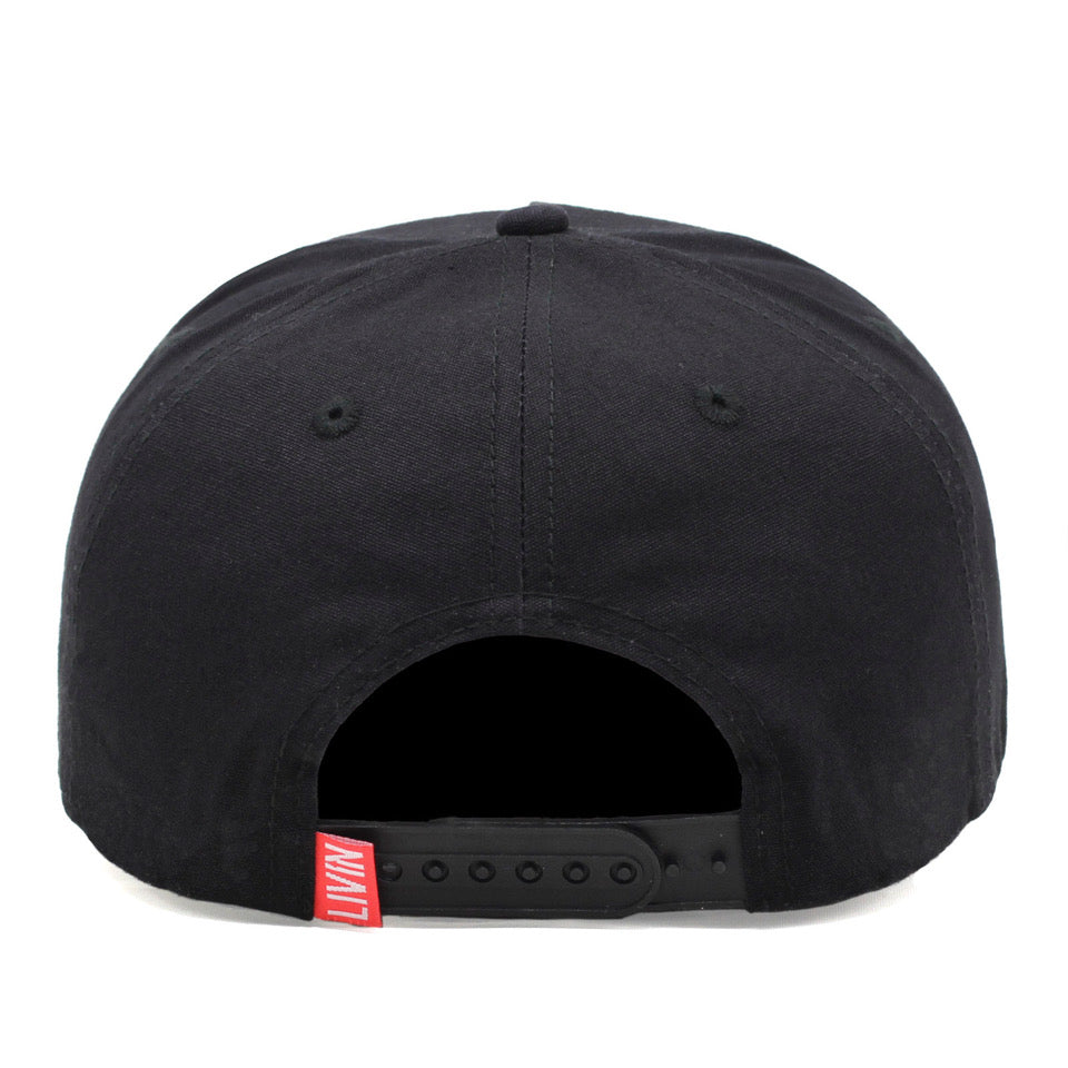 Solid Snapback - Back