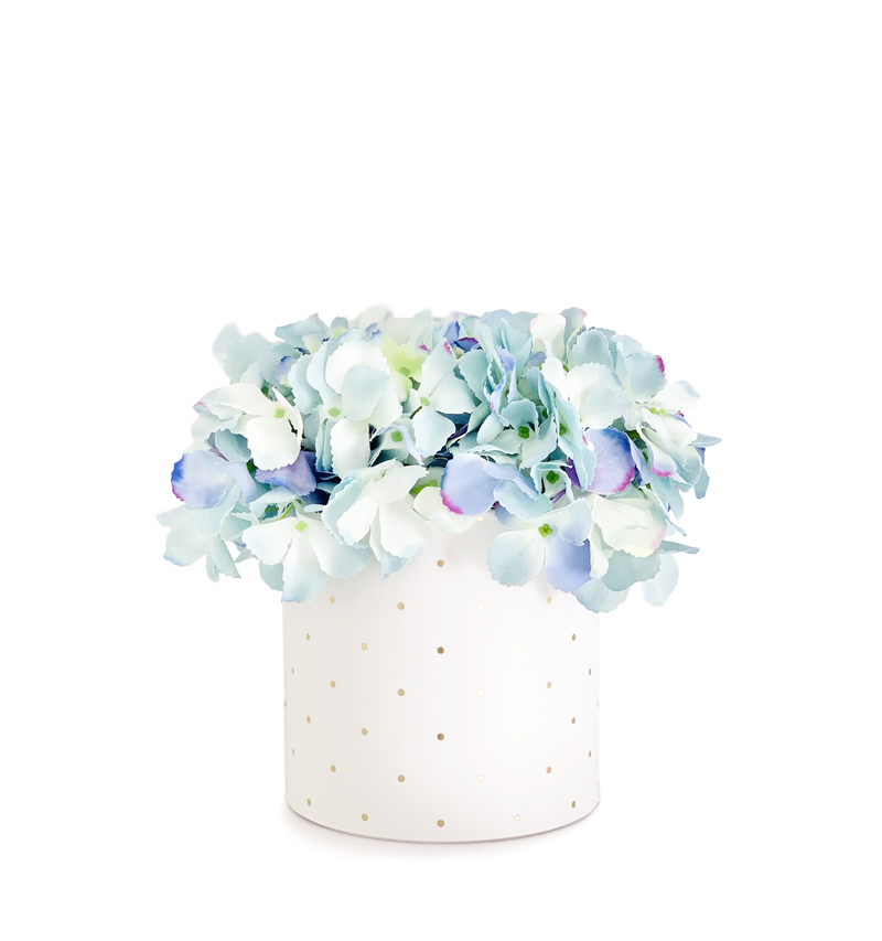 Hand Tied Bouquet Of Powder Blue Hydrangeas Cylinder