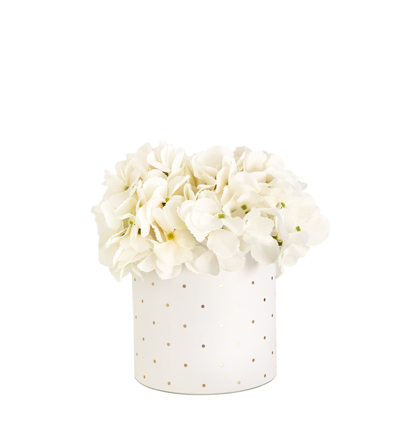 Hand Tied Bouquet Of Cream Hydrangeas Cylinder