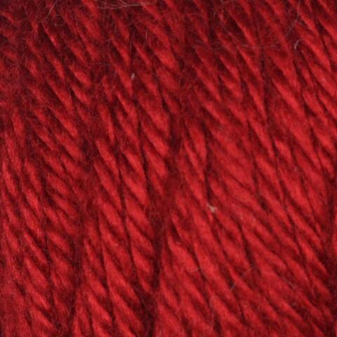 Autumn Red Caron Simply Soft Yarn