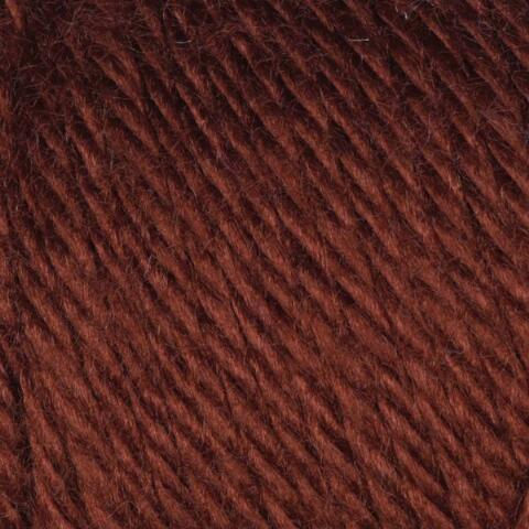 Chocolate Caron Simply Soft Yarn