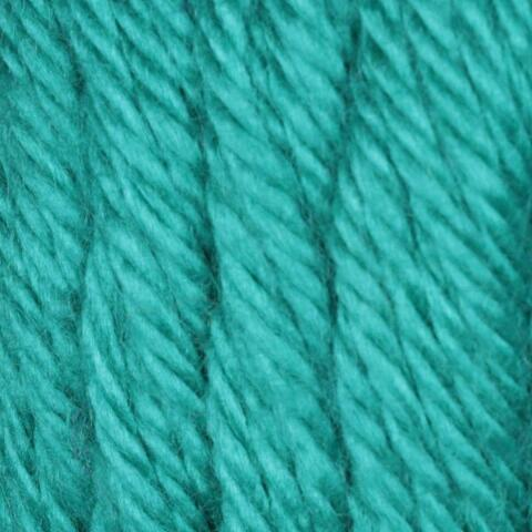 Cool Green Caron Simply Soft Yarn
