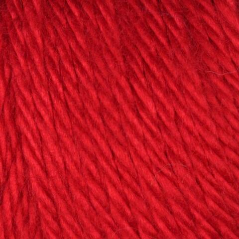 Harvest Red Caron Simply Soft Yarn