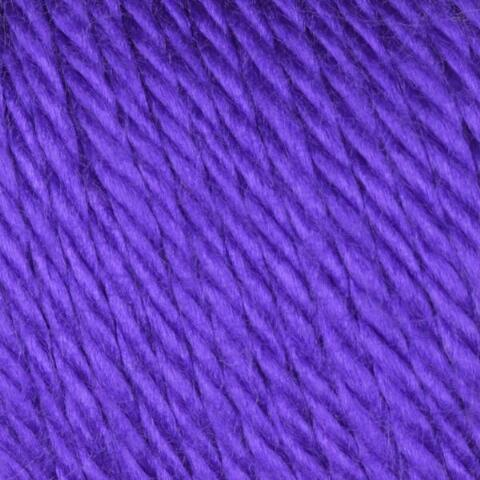 Iris Caron Simply Soft Yarn