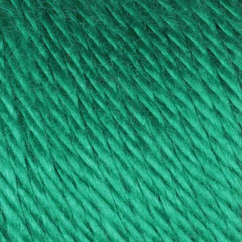 Kelly Green Caron Simply Soft Yarn