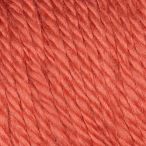 Persimmon Caron Simply Soft Yarn