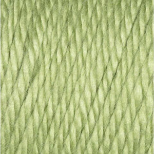 Pistachio Caron Simply Soft Yarn