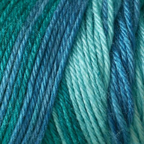 Teal Zeal Caron Simply Soft