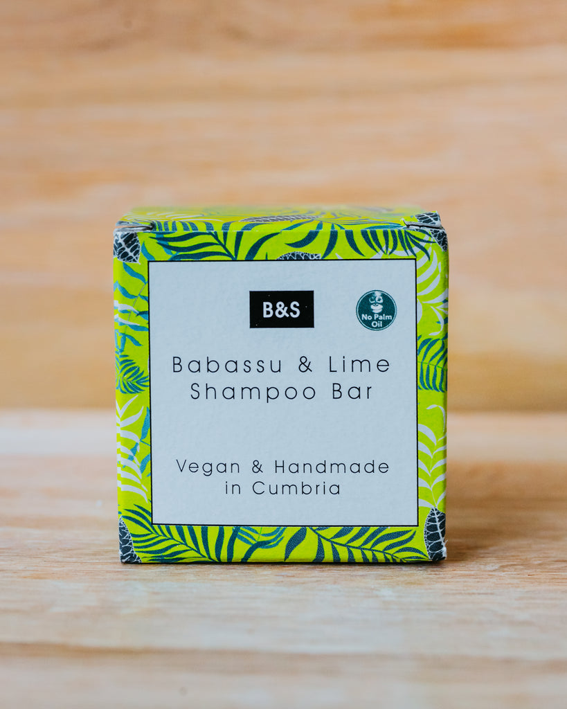 Babassu & Lime Shampoo Bar - Eco and Earth