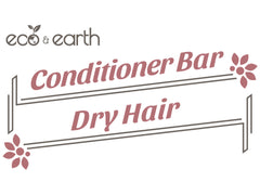 Eco & Earth Solid Conditioner Bar for Dry Hair - Eco and Earth