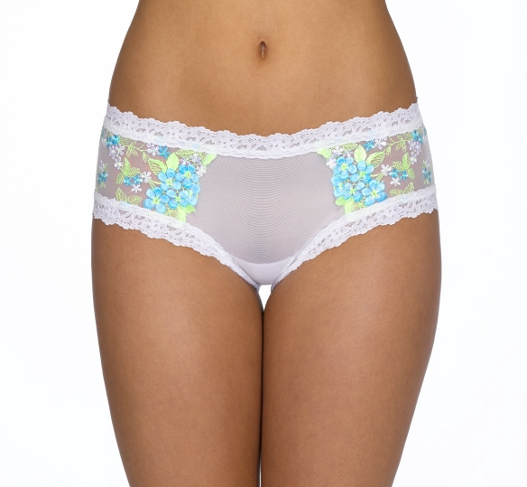 Hanky Panky Embroidered Mesh Cheeky Hipster