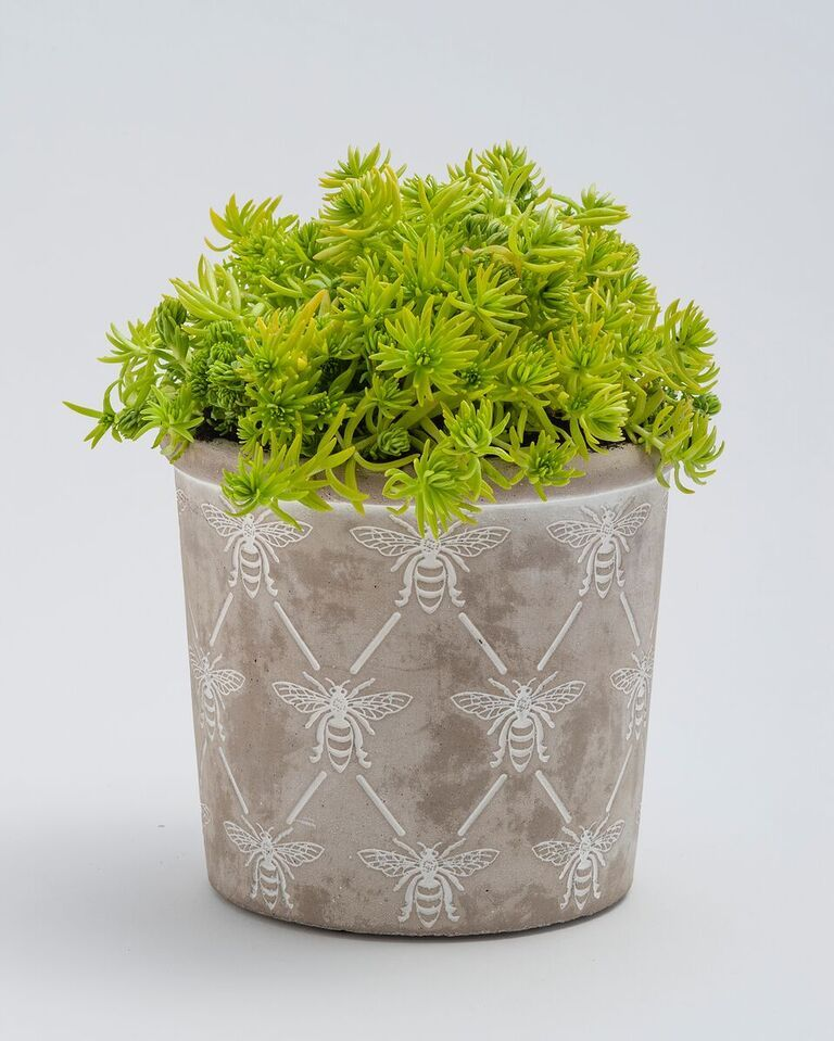 Bee Planter Medium