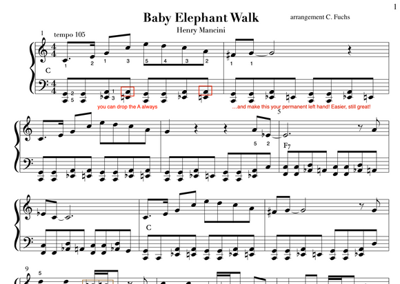 The Baby Elephant Walk