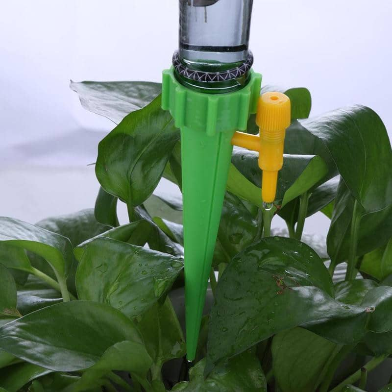 Automatic Plant Watering Spikes - Watch Destination