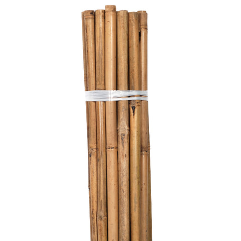 Grower's Edge Natural Bamboo 4 ft Bulk