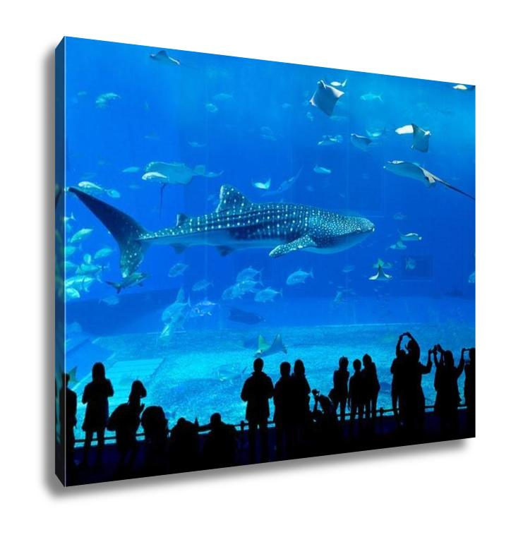 handmade-global-crafts - Gallery Wrapped Canvas, Atlantwhale Shark In Okinawchuraumi Aquarium