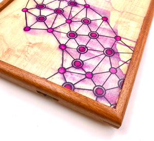 Connection Tray #5